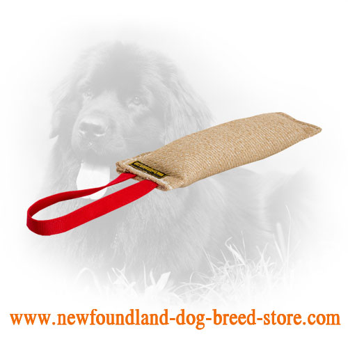 Jute Newfoundland Bute Tug for Puppy Training