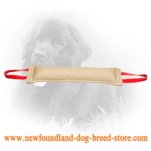 Jute Newfoundland Bite Tug for Training of Young and Adult Dogs