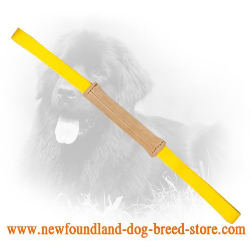 Soft Small in Size Leather Newfoundland Bite Tug