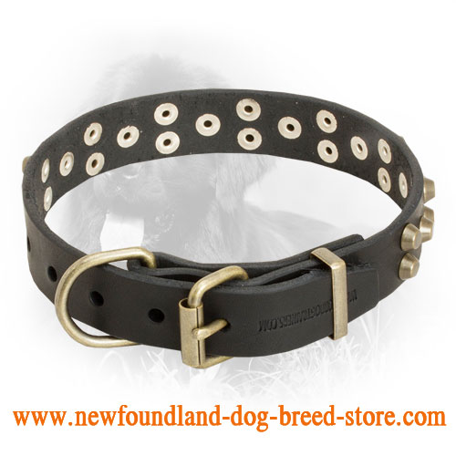 """Starry\"" Leather Newfoundland Collar with Studs"