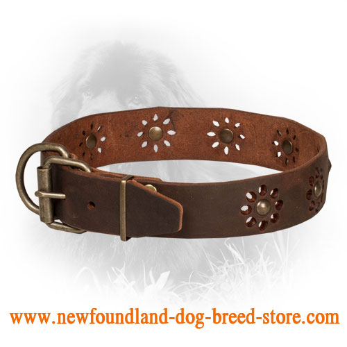 Leather Newfoundland Collar with Attractive Flower Design