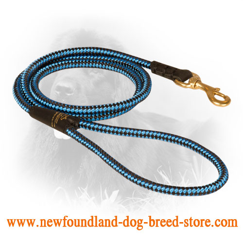 Multifunctional Nylon Newfoundland Leash