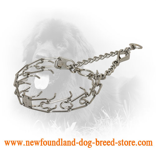 Herm Sprenger Chrome Plated Newfoundland Prong Collar