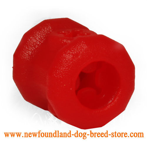 Small Newfoundland Dog Toy with Treats Inside