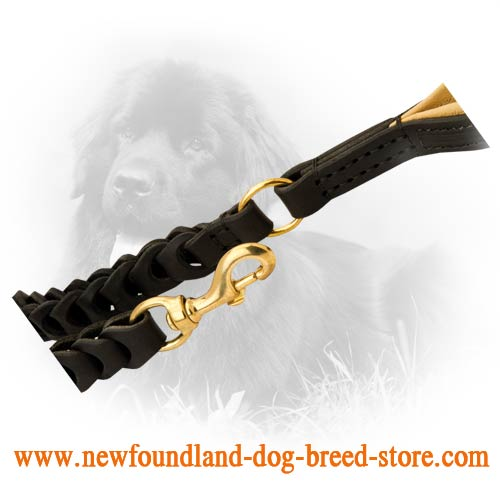 Brass Fittings on Leather Newfoundland Leash