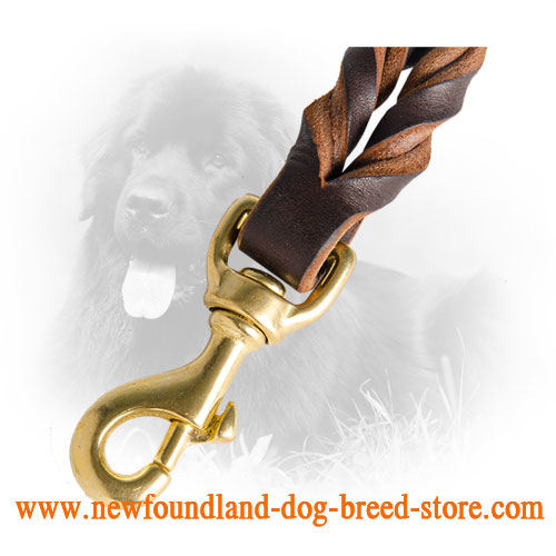 Braids on Leather Newfoundland Leash