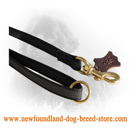 Brass Snap Hook on Newfoundland Leash