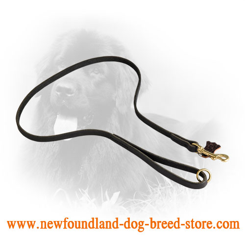 Leather Newfoundland Leash with Brass Floating O-Ring