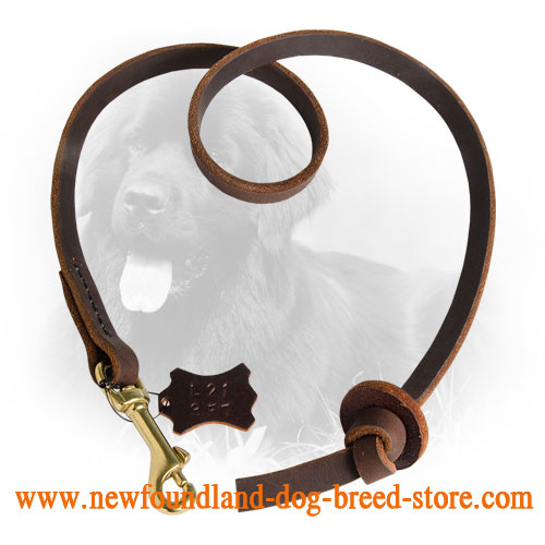 Short Newfoundland Leash with Comfortable Handle