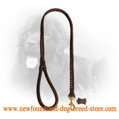 Newfoundland Leash with Soft Leather Handle