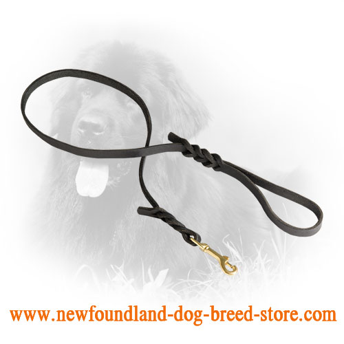 Leather Newfoundland Leash for Daily Use