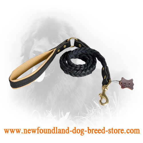 Leather Newfoundland Leash with Fancy Braids