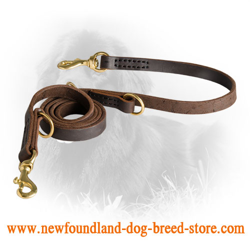 Newfoundland Leash with Regulated Length