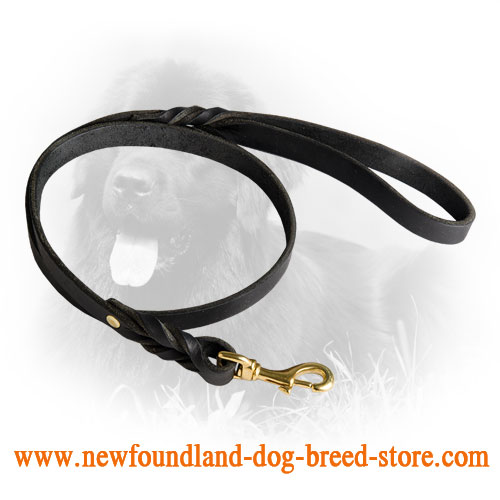 Durable Newfoundland Leash with Braids