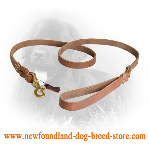 Elegant Design Newfoundland Leash
