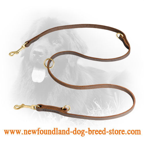 Durable Newfoundland Leash