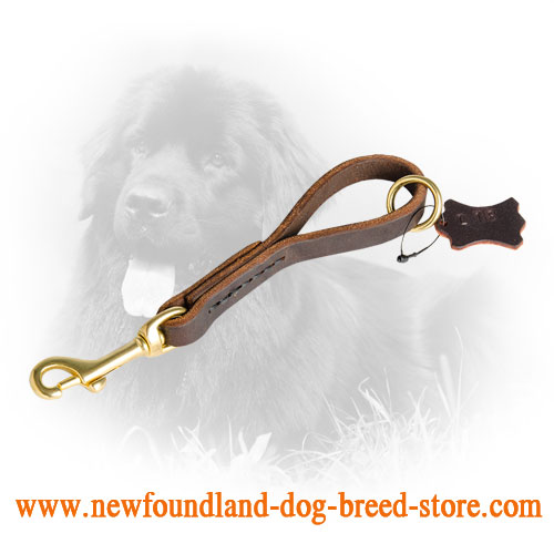 Fast Grab Newfoundland Leash