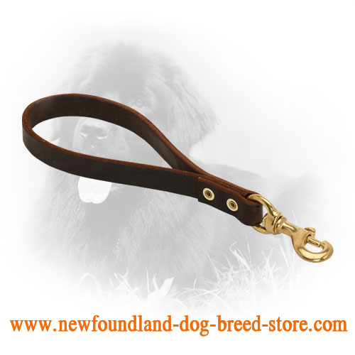 Pull Tab Leather Newfoundland Leash