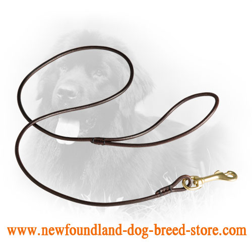 Round Newfoundland Leash for Dog Shows
