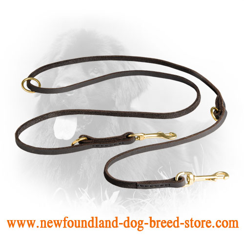 Newfoundland Leash with Brass Fittings