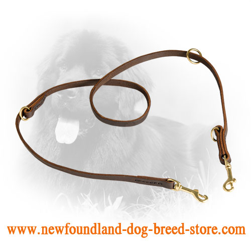 Leather Newfoundland Leash for Multifunctional Use