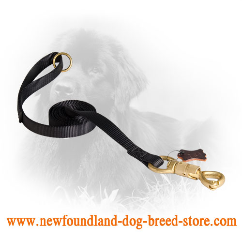 Newfoundland Leash with Strong Smart Lock