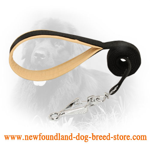 Nylon Newfoundland Leash with Snap Hook