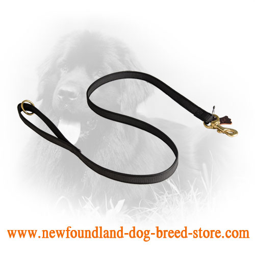 I-Grip Dog Leash of Nylon