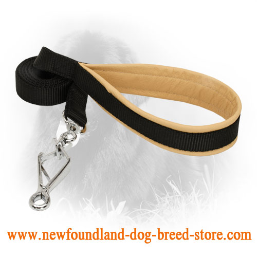 Nylon Newfoundland Leash with Convenient Handle