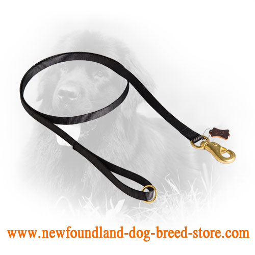 Multifunctional Use Newfoundland Leash