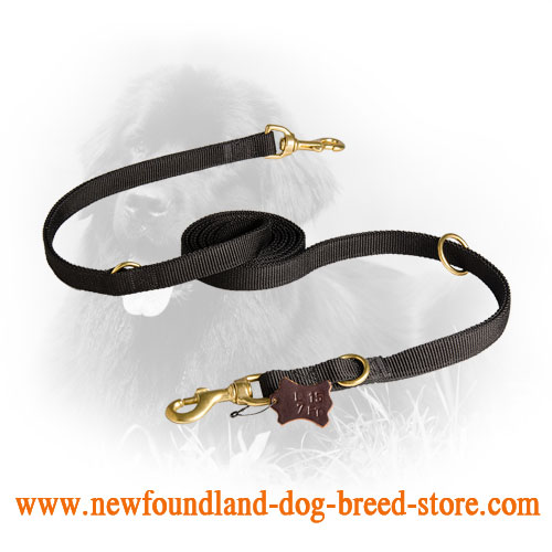 Newfoundland  Leash with Brass Snap Hook