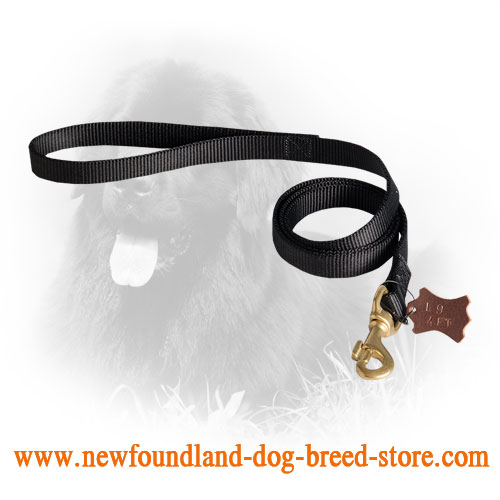 Newfoundland Leash for Military Service