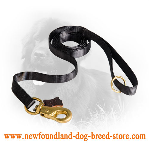 Newfoundland Leash with Brass Hardware