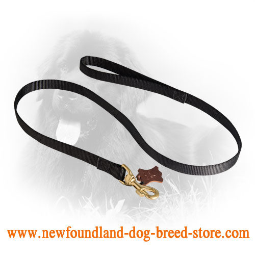 Newfoundland Leash for Tracking Work