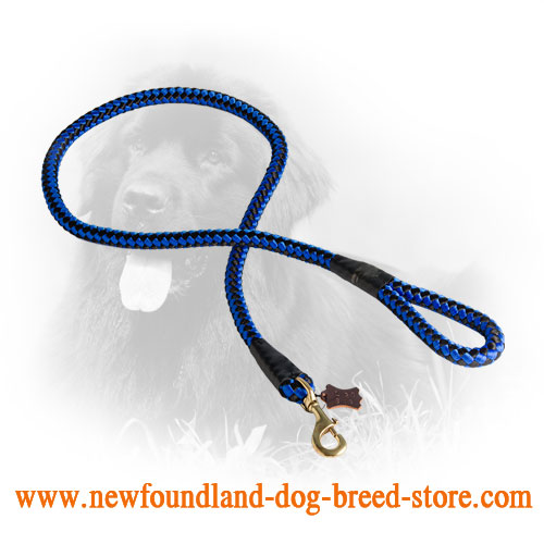 Newfoundland Nylon Leash with Chess Design