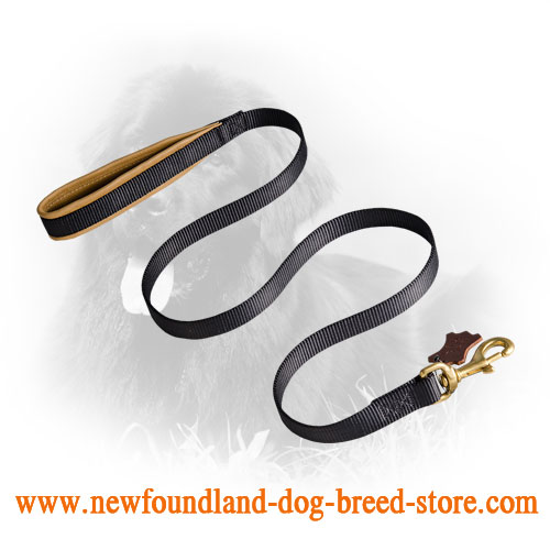 Newfoundland Leash for Training and Walking