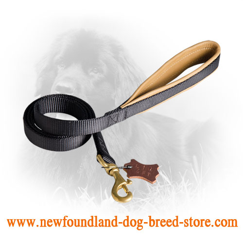 Durable Newfoundland Leash with Soft Padded Handle