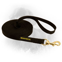 Newfoundland Nylon Leash Bad Weather