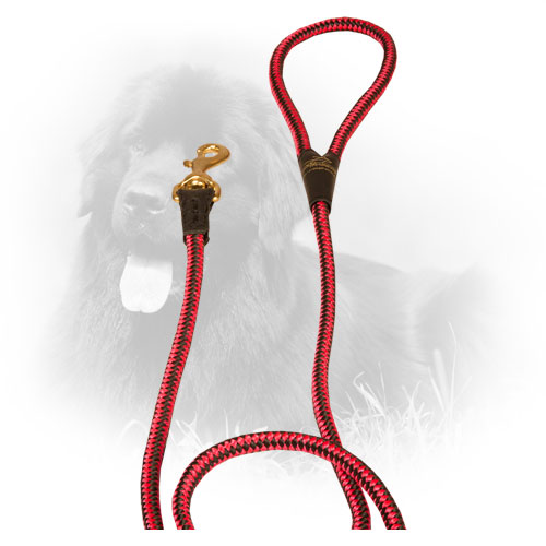 Nylon Newfoundland Leash with Strong Snap Hook