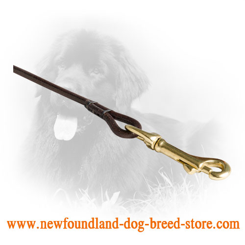 Brass Snap Hook on Leather Newfoundland Leash