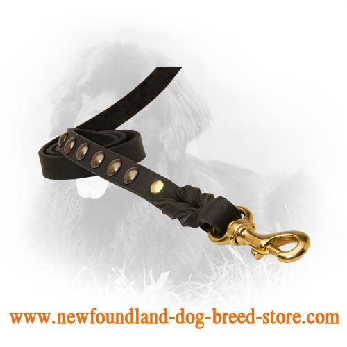 Strong Snap Hook on Leather Newfoundland Leash
