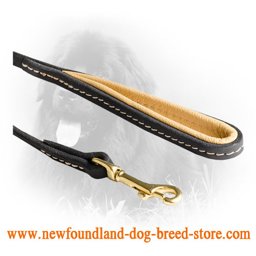 Stitched Leather Newfoundland Leash With Comfortable