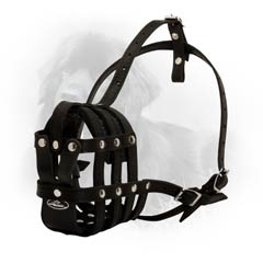 Modern Comfortable Well Ventilated Leather Dog Muzzle