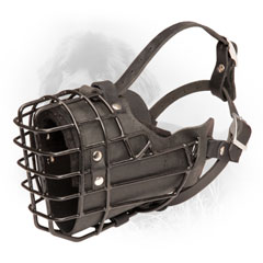Black Leather Dog Muzzle with Adjustable Straps