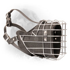 Soft Nappa Padded Leather Dog Muzzle