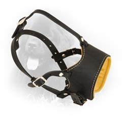 Handmade Exclusive Leather Dog Muzzle