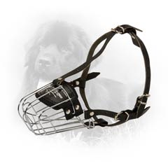 Solid Rust Free Wire Cage Dog Muzzle