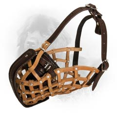 Comfy and Durable Leather Dog Muzzle