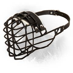 Gorgeous Special Metal Basket Dog Muzzle