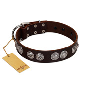 """High and Mighty"" FDT Artisan Classy Brown Leather Newfoundland Collar with Embellished Brooches"